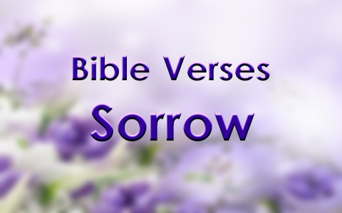 Bible Quotes About Death Of A Loved One Mesmerizing 7 Good Bible Verses About Sorrow