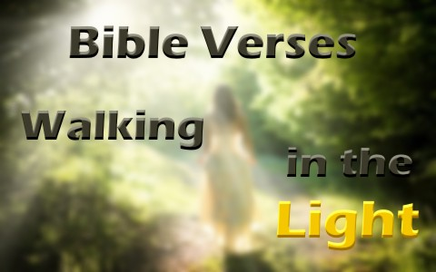 7 Great Bible Verses About Walking In The Light