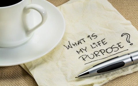 7 Important Bible Verses About Purpose