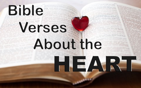 7 encouraging bible verses about the heart freerunsca Image collections