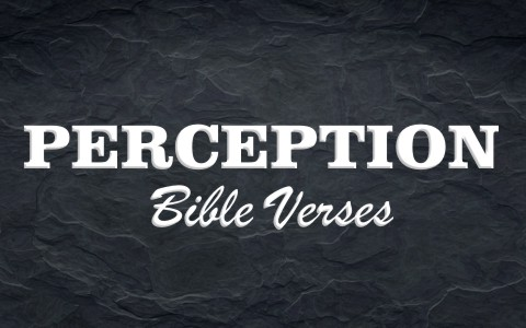 top-8-bible-verses-about-perception