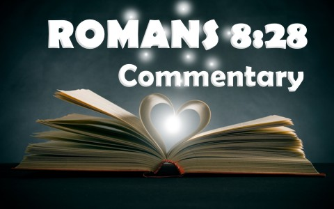 Romans 828 commentary how does romans 828 give us hope sciox Gallery